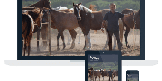 Página Web Equus